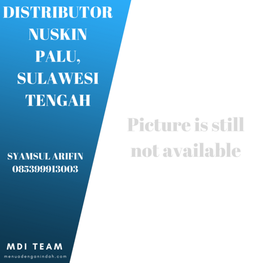 Syamsul Arifin, Distributor Nuskin Palu